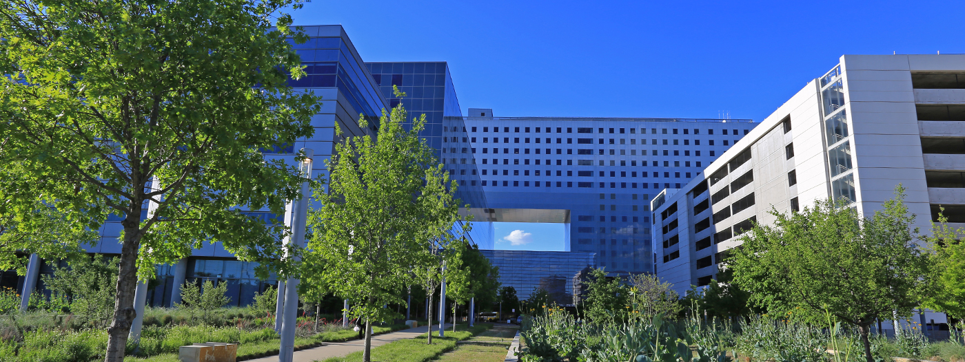 Vacant Parkland Hospital Campus Primed to Make More Dallas History