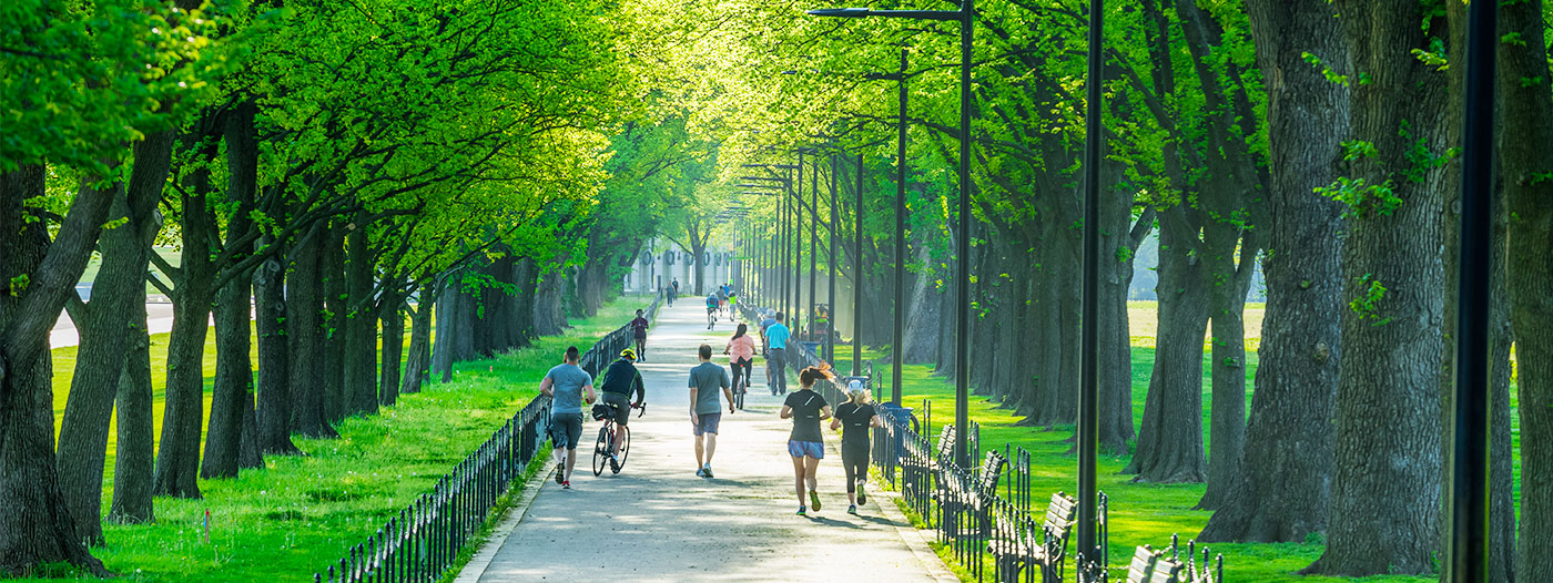 Ranking D.C. Neighborhoods' Best Running Trails