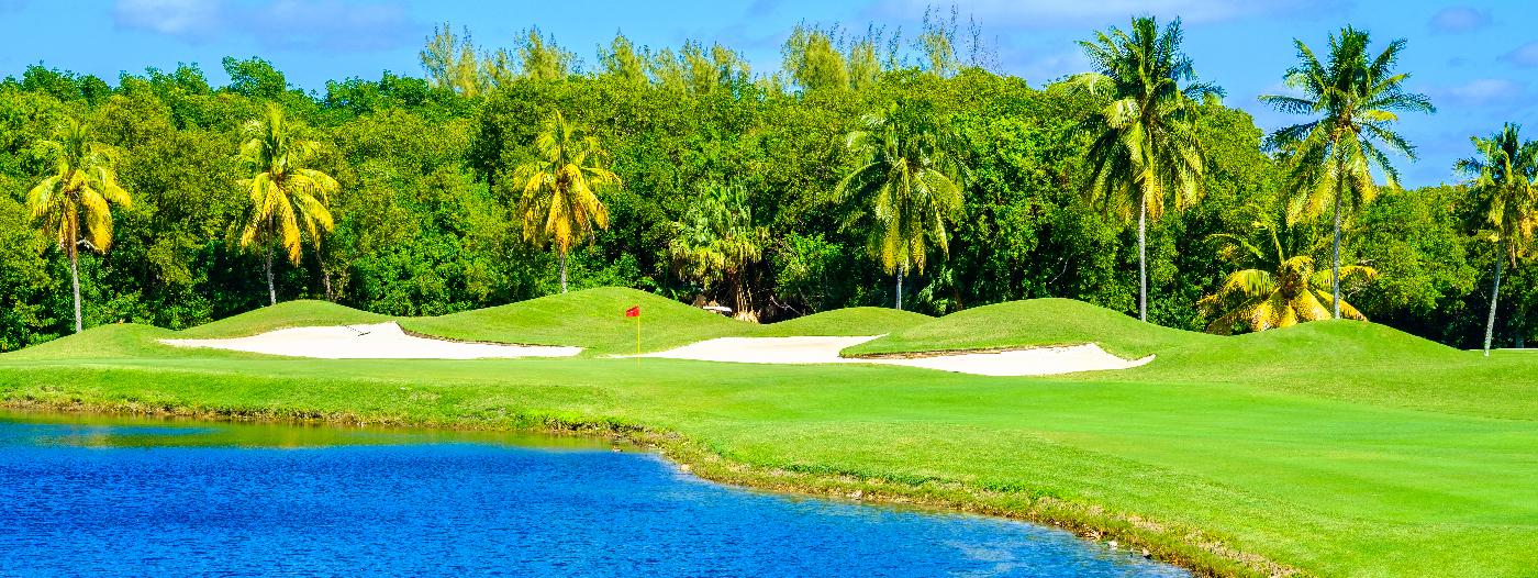 6 Reasons to Take a Day Trip to the Miami Suburbs