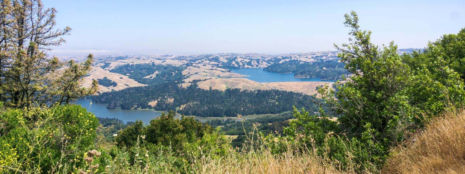 San Pablo and Briones reservoirs surrounded by golden hills