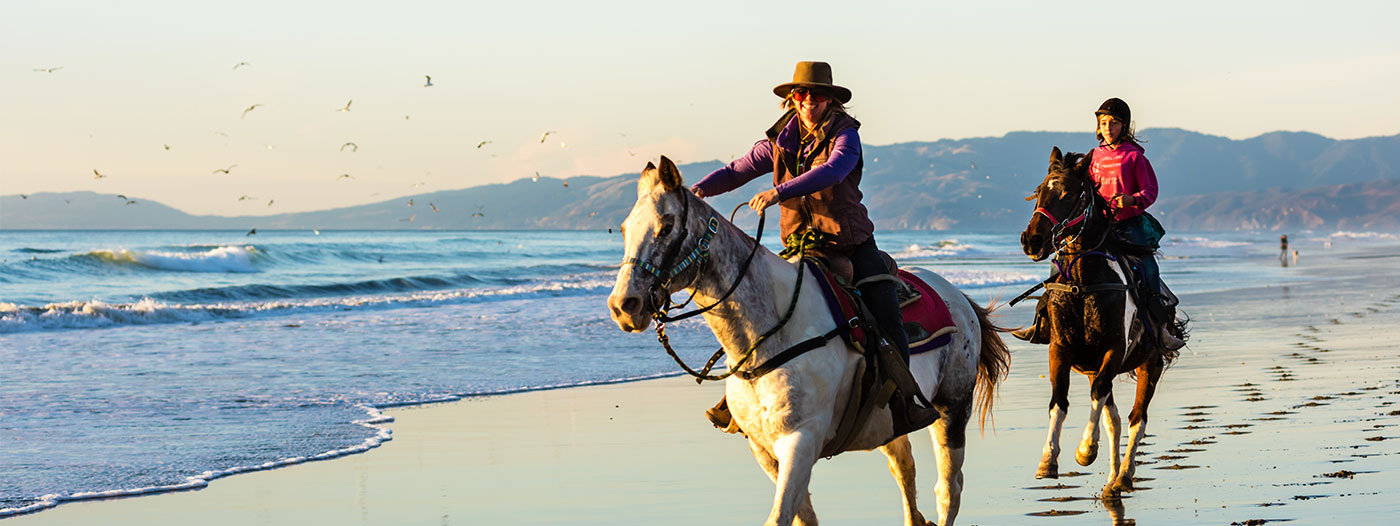 Bay Area Neighborhoods Horseback Riders Love