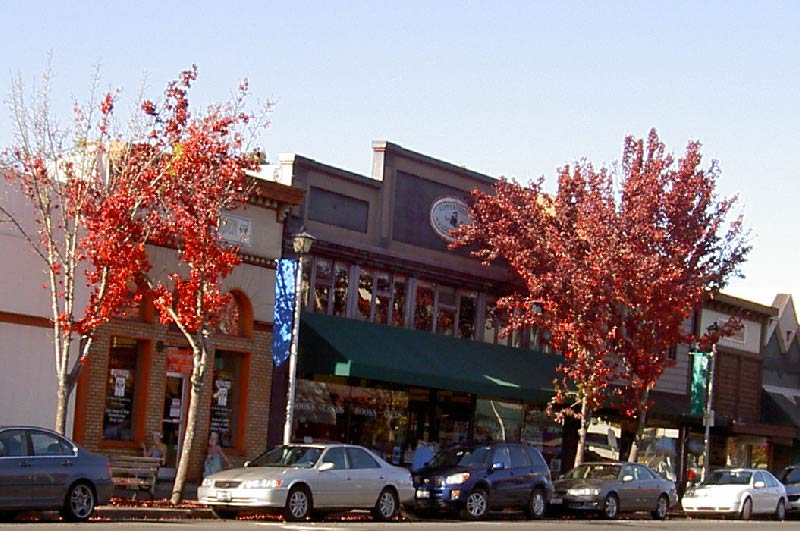 Downtown Sebastopol California